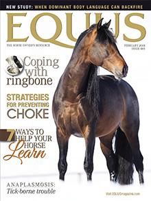 Equus-2018-01