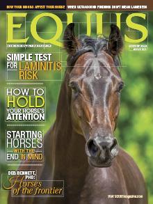 Equus-2018-08