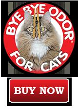 Get Rid Of Cat Urine Odor Today!