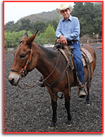 Picture of Dr. Robert Miller DVM on his mule