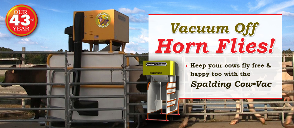 Fly Control With Cow Vac For Dairies – Vacuum Off Those