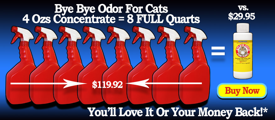 Get Rid Of Cat Urine Odor Today!