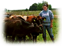 Darby Holmes Dairy Unit Manager Chico State University, Chico CA