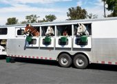 Bye Bye Odor Use In Trailer's Can Significantly Impact Equine Health.